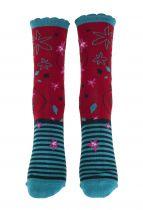 Chaussettes rigolotes coton bio Liligambettes thème edelweiss